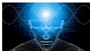 moreno-brain-300x172
